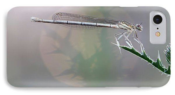 Dragonfly On Leaf IPhone Case by Michal Boubin