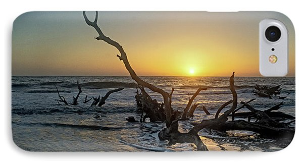 Driftwood Beach Phone Case by Patricia Turo