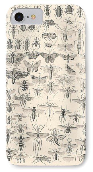 Entomology IPhone Case by Rob Dreyer
