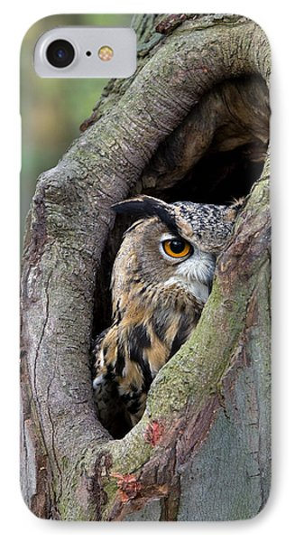 Eurasian Eagle-owl Bubo Bubo Looking IPhone Case