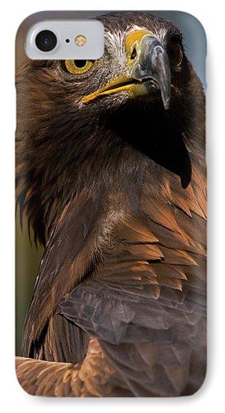 European Golden Eagle IPhone Case