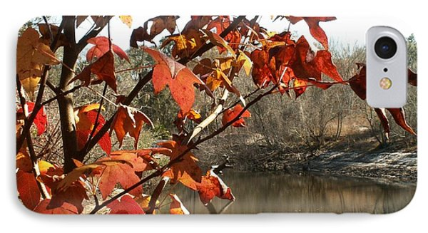 Fall On The Withlacoochee River IPhone Case by Theresa Willingham