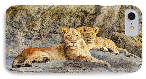 Female Lion And Cub Hdr IPhone Case by Marv Vandehey