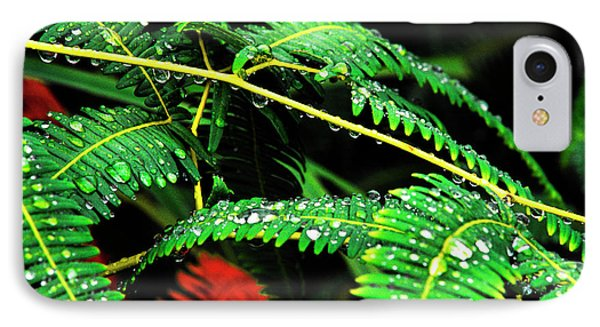 Ferns And Raindrops Phone Case by Thomas R Fletcher
