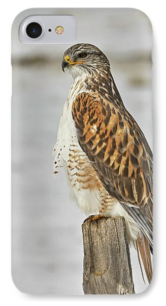 Ferruginous Hawk Phone Case by Doug Herr