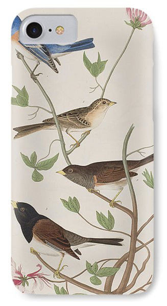 Finches IPhone 7 Case by John James Audubon