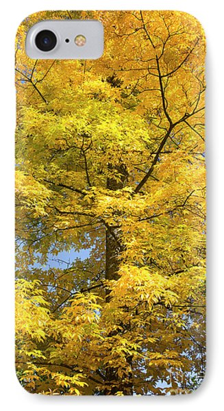 IPhone Case featuring the photograph Fire In The Sky by Tim Gainey