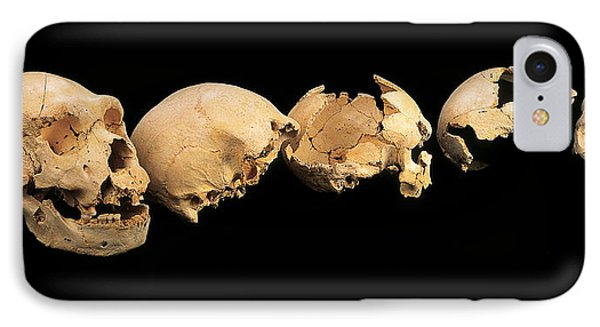 Fossilised Skulls, Sima De Los Huesos IPhone Case