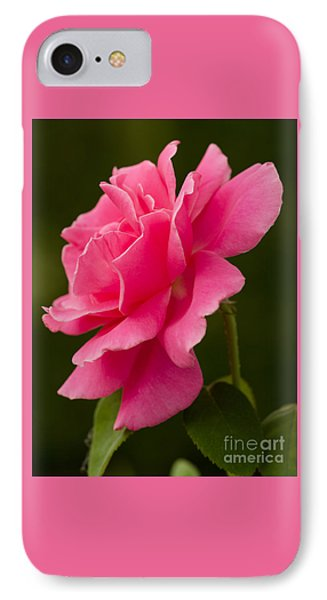 Friday's Rose IPhone Case