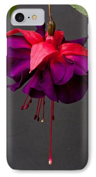 Fuchsia Phone Case by Dawn OConnor