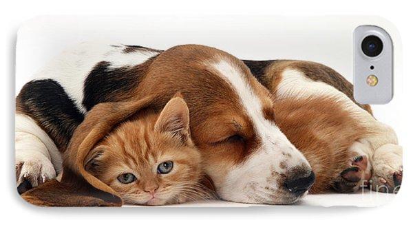 Ginger Kitten And Basset Puppy IPhone Case by Jane Burton