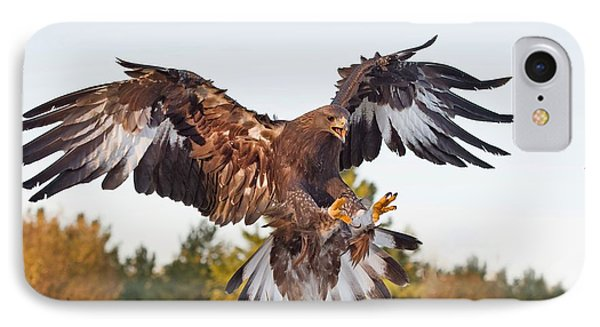 Golden Eagle IPhone Case by CR  Courson