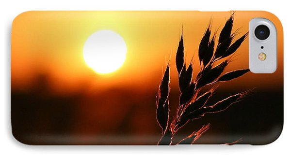 IPhone Case featuring the photograph Golden Sunset by Franziskus Pfleghart