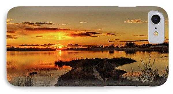 Golden View IPhone Case by Robert Bales