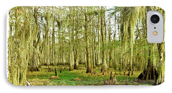 Grand Bayou Swamp  Phone Case by Scott Pellegrin
