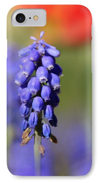 IPhone Case featuring the photograph Grape Hyacinth by Chris Berry