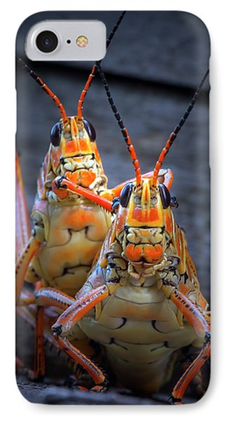Grasshoppers In Love IPhone Case by Mark Andrew Thomas
