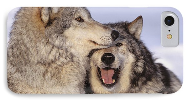 Gray Wolves Phone Case by John Hyde - Printscapes
