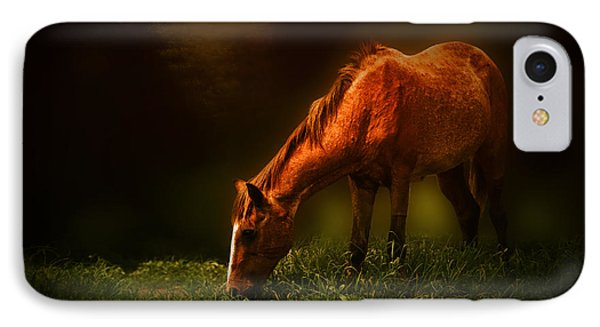 Grazing IPhone Case by Charuhas Images