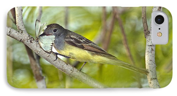 Great Crested Flycatcher IPhone Case by Anthony Mercieca