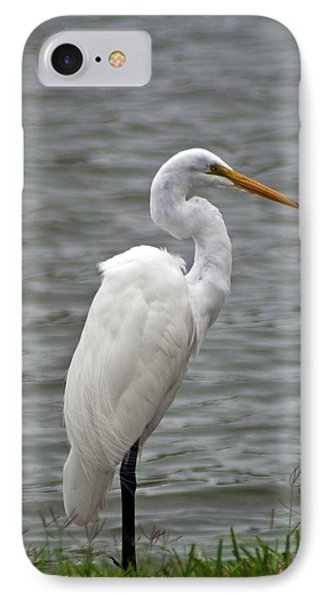 IPhone Case featuring the photograph Great Egret by Bill Barber