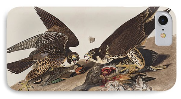 Great-footed Hawk IPhone 7 Case by John James Audubon