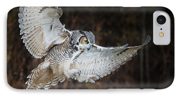 Great Horned Owl IPhone Case by CR Courson