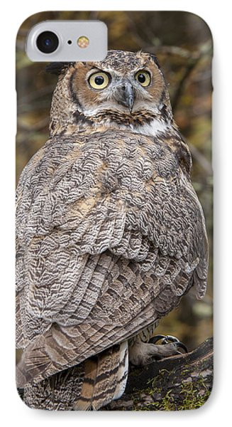 Great Horned Owl IPhone Case by Tyson Smith