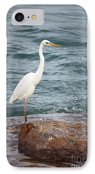 Great White Heron IPhone 7 Case by Elena Elisseeva