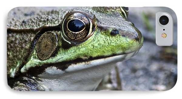 IPhone Case featuring the photograph Green Frog by Michael Peychich