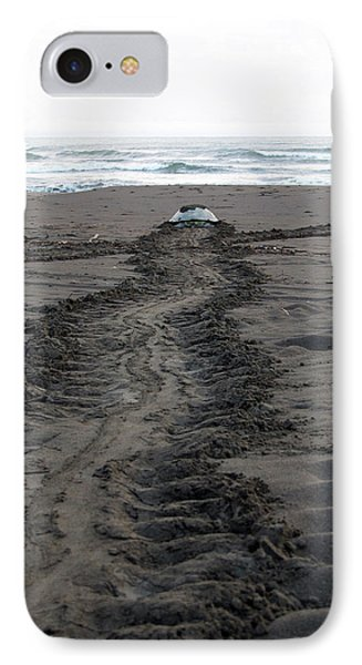 IPhone Case featuring the photograph Green Sea Turtle Returning To Sea by Breck Bartholomew