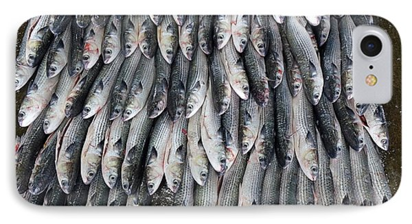 IPhone Case featuring the photograph Grey Mullet Fish For Sale At The Fish Market by Yali Shi