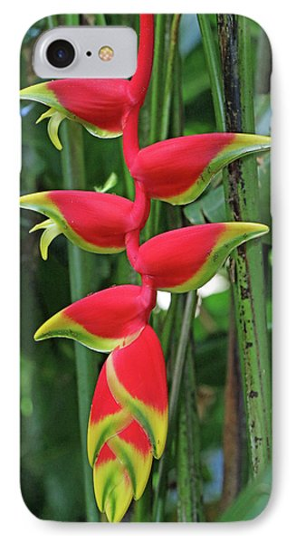 Hawaii Flora IPhone Case