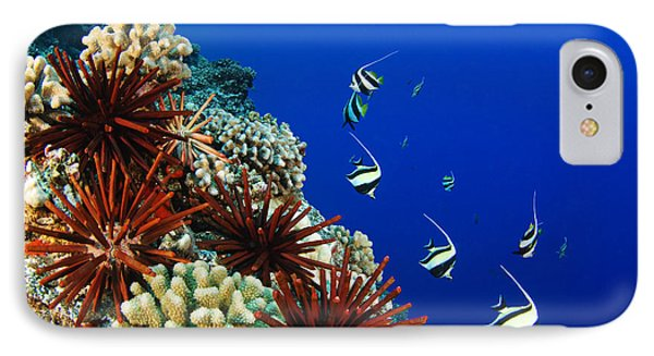 Hawaiian Reef Scene Phone Case by Dave Fleetham - Printscapes