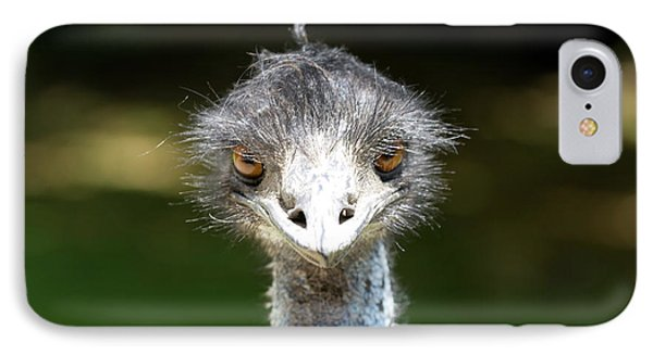 Head Of Ostrich IPhone Case by Patricia Hofmeester