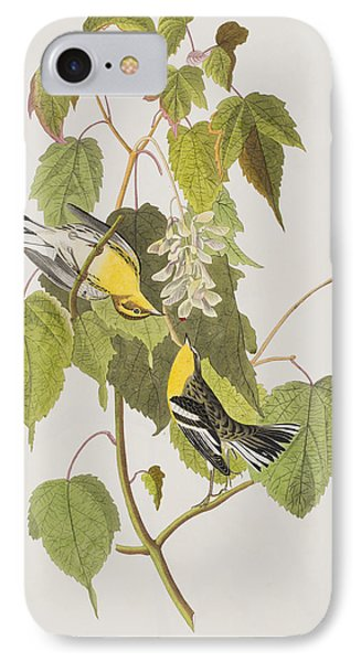 Hemlock Warbler IPhone 7 Case by John James Audubon