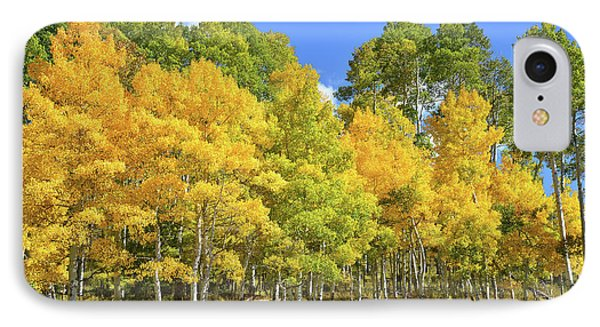 IPhone Case featuring the photograph High Country Aspens by Ray Mathis