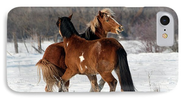 IPhone Case featuring the photograph Horseplay by Mike Dawson