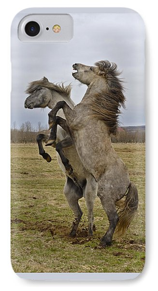 Horsing Around IPhone Case by Tony Beck