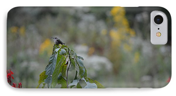 Humming Bird Phone Case by Linda Geiger