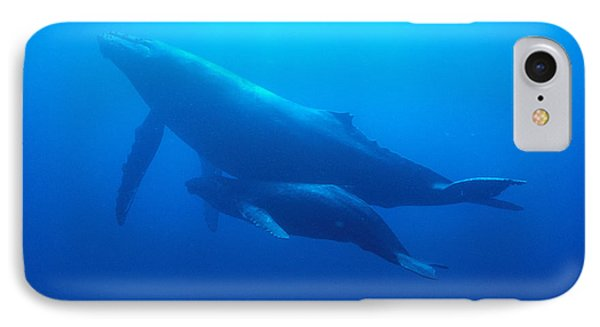 Humpback Mother And Calf Phone Case by Ed Robinson - Printscapes