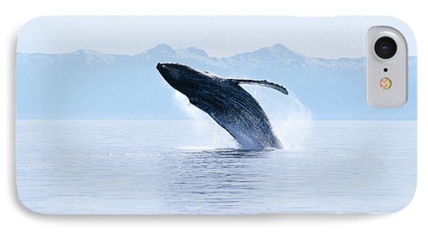 Humpback Whale Breaching Phone Case by John Hyde - Printscapes