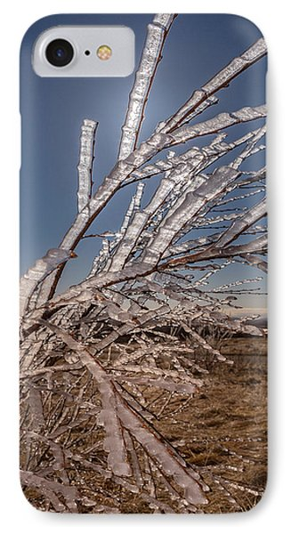 Ice Crystals On Tree Branches, Iceland IPhone Case by Panoramic Images