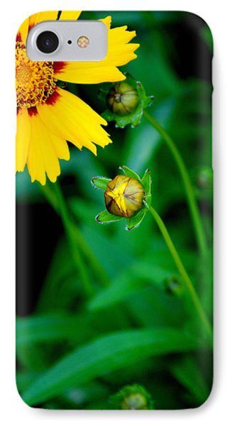 Illumination Phone Case by Frozen in Time Fine Art Photography