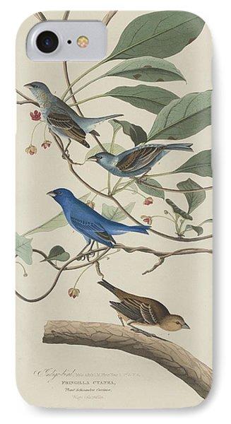 Indigo Bird IPhone Case by Rob Dreyer