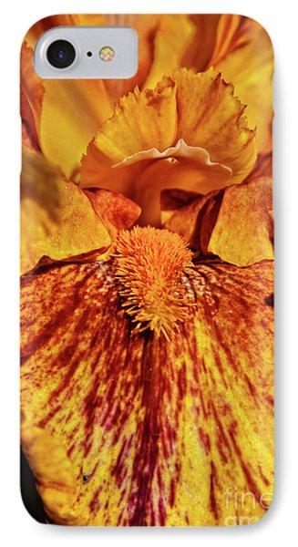 Iris Macro IPhone Case by Robert Bales