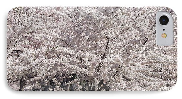 Japanese Cherry Blossom Trees Phone Case by April Sims