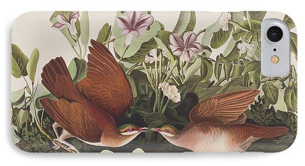 Key West Dove IPhone 7 Case by John James Audubon