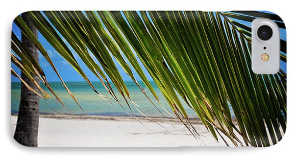 IPhone Case featuring the photograph Key West Palm by Kelly Wade