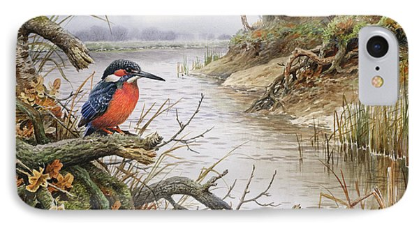 Kingfisher IPhone Case by Carl Donner
